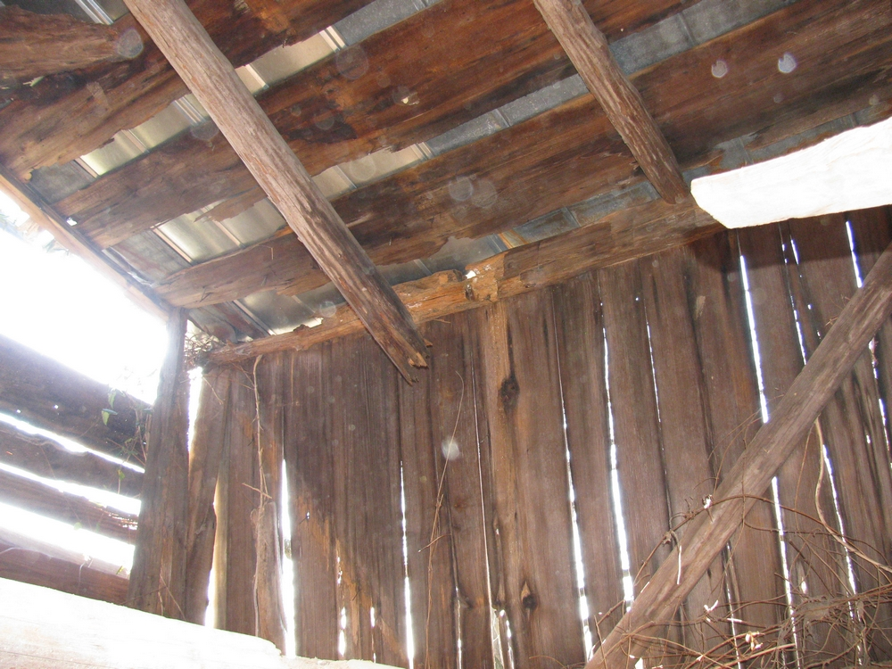 Broken Shed Rafters